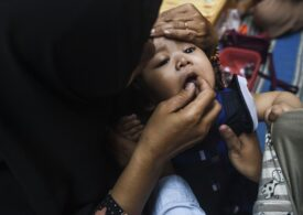 Olandezii suspendă adopțiile internaționale după ce o anchetă a scos la iveală practici abuzive, acte false și schimburi de bebeluși