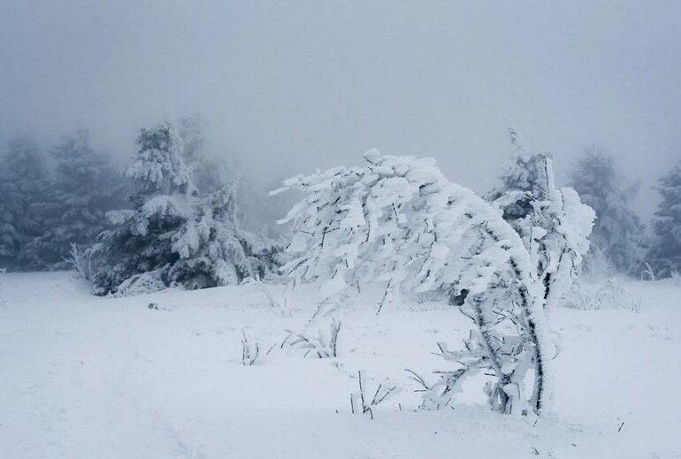 Informare meteo și cod galben de ninsori: Sunt vizate Capitala și 14 județe