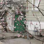 Meteo: În weekend se întoarce primăvara
