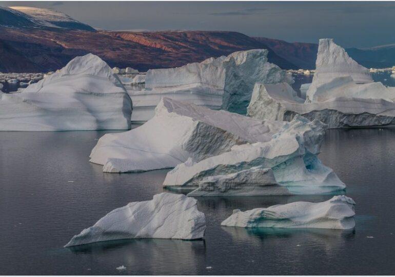 Arctica poate redeveni luxuriantă și verde în viitor. Când s-ar putea întâmpla asta