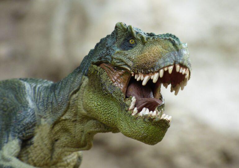 O echipă condusă de un paleontolog maghiar a redescoperit un sit al dinozaurilor în Transilvania