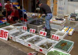 Raport final al OMS: Nu există dovezi că pandemia a început la Wuhan