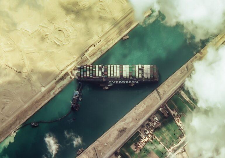"""10 vapoare cu animale vii din România sunt blocate în canalul Suez. Animals International avertizează că poate fi """"cea mai mare tragedie maritimă din istoria omenirii"""""""