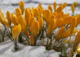 Martie începe cu căldură, dar nu durează - prognoza meteo pe două săptămâni