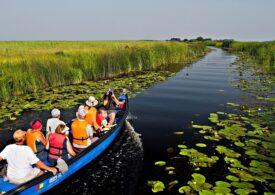 Turiștii au luat cu asalt Delta Dunării: La intrarea în Tulcea s-au format coloane de mașini pe distanțe de kilometri