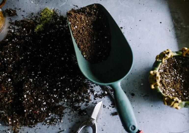 La Cluj se organizează ateliere de grădinărit pentru copii şi adulţi