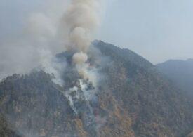 Nepalul se confruntă cu cele mai violente incendii de pădure din ultimul deceniu