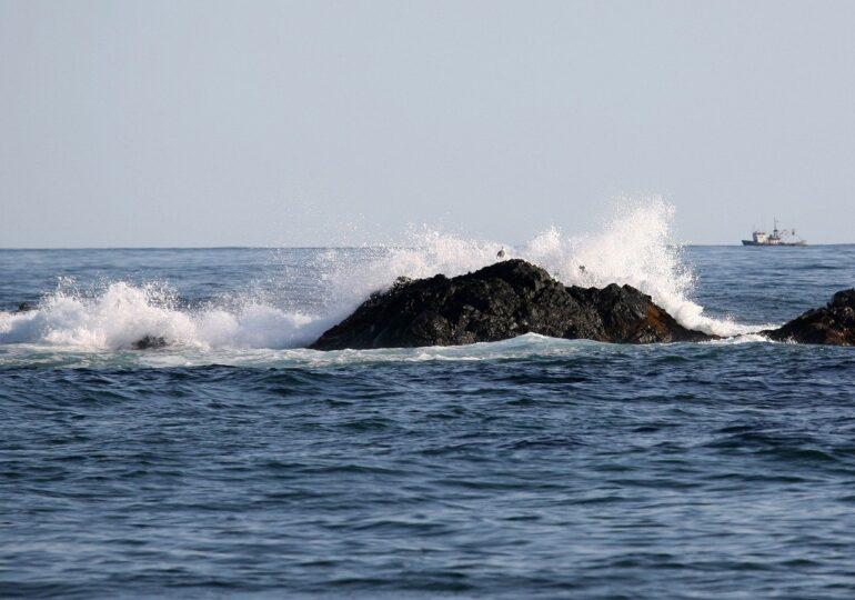 Cutremurele pot fi detectate cu ajutorul cablurilor de telecomunicaţii subacvatice