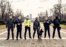 Poliţia Română are angajate mult mai multe femei ca în restul UE. Care e vârsta medie a poliţiştilor