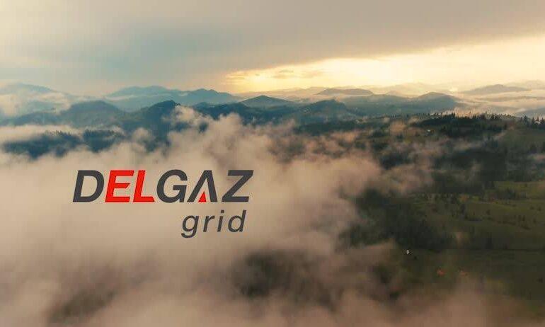 Consiliul Concurenţei a amendat cu peste 6 milioane de euro compania Delgaz Grid, din grupul E.ON