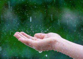 Beneficiile acumulării apei pluviale