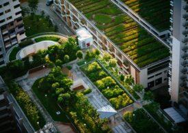 Pentru un viitor mai bun, avem nevoie de orașe sustenabile: Cum ajungem la dezvoltare durabilă cu ajutorul a trei schimbări simple
