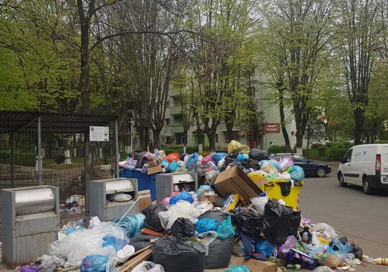 Ploieștiul se sufocă sub grămezi de gunoi care zac neridicate pe străzi. Primarul a convocat Comitetul pentru Situaţii de Urgenţă și se războiește cu Poliția Locală
