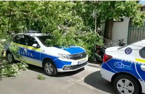 Vântul puternic din Bucureşti a doborât 50 de copaci peste mașini și străzi şi a produs valuri ca la mare, în Herăstrău (Foto&Video)