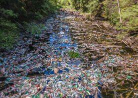 Imagini incredibile cu o frumuseţe de lac sufocat de deșeuri. Voluntarii l-au curăţat (Galerie foto)