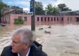 Viral: Barca guvernatorului Crimeii a fost urmărită de trei înotători misterioși