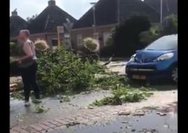 O furtună puternică a distrus case şi a doborât copaci seculari în Olanda (Video)