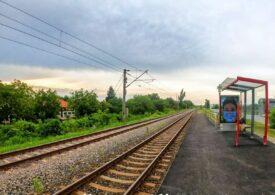 Un plop doborât de vijelie pe calea ferată afectează traficul în Cluj: 4 trenuri vor circula cu tracțiune Diesel