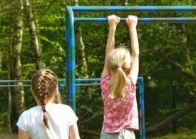 Semnal de alarmă: Criza de asistenți sociali contribuie la abandonul școlar