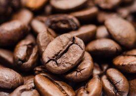 Cea mai scumpă cafea din ultimii 6 ani, din cauza îngheţului care pune în pericol culturile din Brazilia