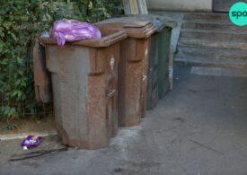 Colectarea selectivă în Sectorul 2, blocată de consilierii PNL + PSD + PMP. Ce tarife vor plăti cetățenii pentru ridicarea gunoiului
