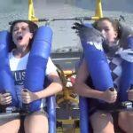 Te-ai gândit cum ar fi când ești într-o cursă nebună, într-un parc de distracții, să îți apară un pescăruș în față? (Video)