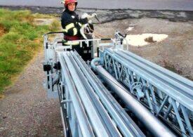 Un pui de barză, dat jos de vânt, a fost salvat și urcat în cuib de pompieri (Foto)