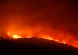 Italia cere statelor europene să trimită avioane pentru a ajuta la stingerea incendiilor din Sardinia