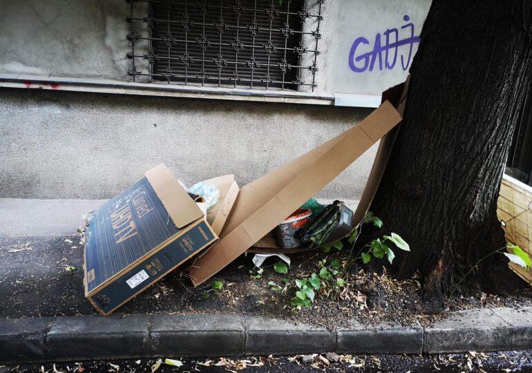 """Aproape 300 de """"puncte fierbinți"""" cu gunoi în Sectorul 2 al Capitalei. Ce a făcut Radu Mihaiu pentru a rezolva problema"""