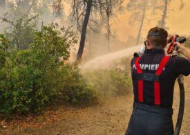 Grecia mulțumește oficial României pentru ajutorul dat de pompierii noștri