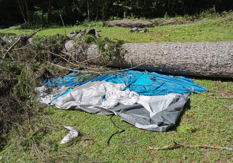 Furtună iscată din senin în Mureș. O fetiță de 6 ani a murit, după ce un copac uriaș a căzut peste cortul familiei