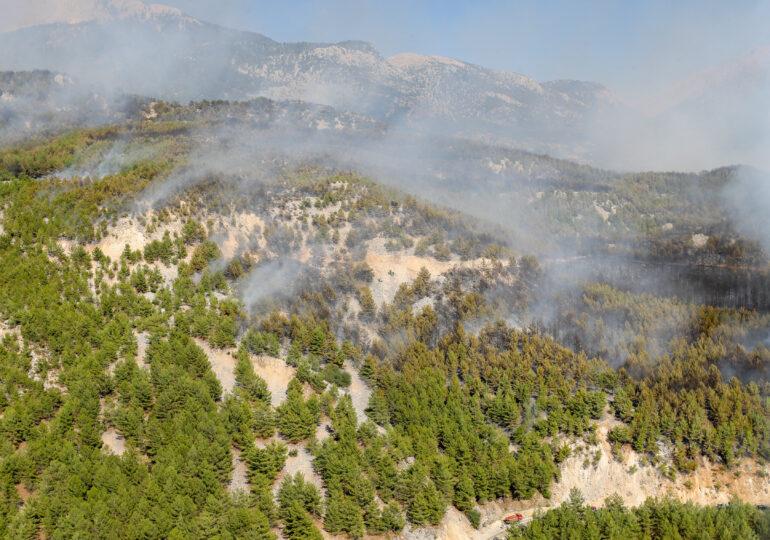 Incendii în Europa: UE trimite avioane, elicoptere și pompieri