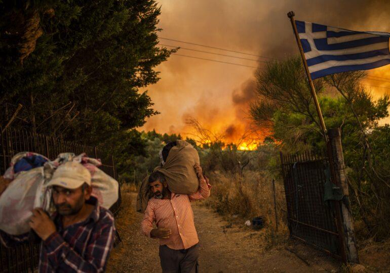 Planeta arde în incendii de vegetație. Fenomenul era chiar benefic, dar ceva i-a schimbat cursul natural