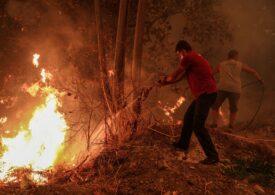 Grecia e din nou în flăcări: Insula Evia evacuată, pompierii români trimiși în  Kryftes şi Vilia
