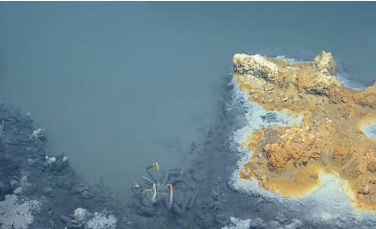 Lacul de sub mare de unde nimeni nu se mai întoarce în viață (Video)