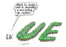 Comisia Europeană vrea să planteze 3 miliarde de copaci până în 2030