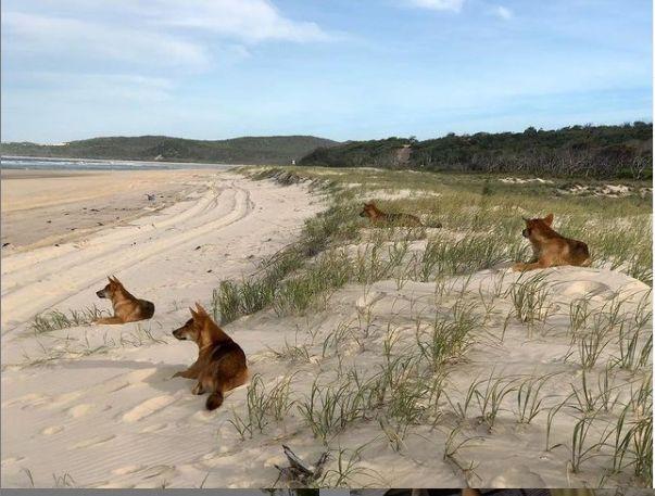 Plaje superbe, dar unde ai face bine să nu ajungi. Sunt cele mai periculoase din lume (Galerie foto)