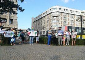 Protest la Ploieşti faţă de criza deşeurilor din oraş: Poluarea ucide!