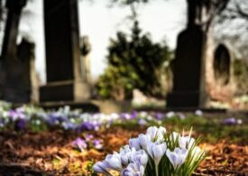 5 Tipuri de servicii pe care ți le pot oferi agențiile de pompe funebre