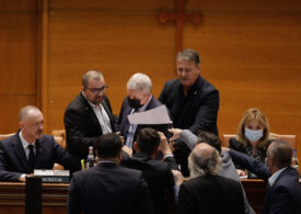 Anca Dragu depune plângere împotriva lui Florin Roman, la o săptămâna de la circul din Parlament