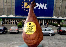 Un ciolan uriaș a fost postat în fața Romexpo, unde are loc Congresul PNL