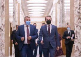 Cîțu cere anchetarea lui Stelian Ion pentru abuz de funcție și verificări la ministere - UPDATE