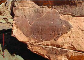 Nişte desene 3D descoperite în deşertul Arabiei sunt mai bătrâne decât piramidele sau Stonehenge