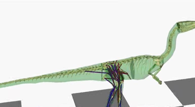 Și dinozaurii dădeau din coadă, dar din cu totul alt motiv față de câini