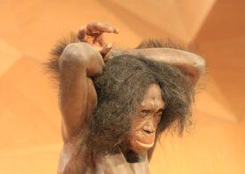 S-au găsit dovezi că oamenii confecționau haine încă de acum 120.000 de ani