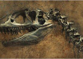 Acest dinozaur abia descoperit l-ar fi îngrozit și pe Tyrannosaurus rex