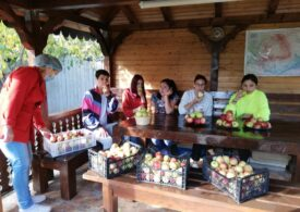 O femeie de 90 de ani din Vrancea a donat patru tone de mere pentru copiii şi adulţii instituţionalizaţi