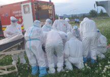 Pandemia, prin