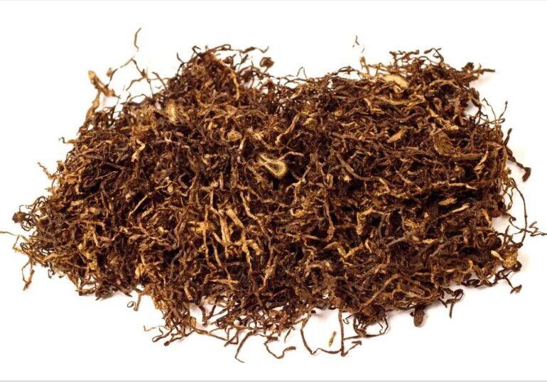 De când consumăm tutun? Descoperirea care răstoarnă tot ce se știa
